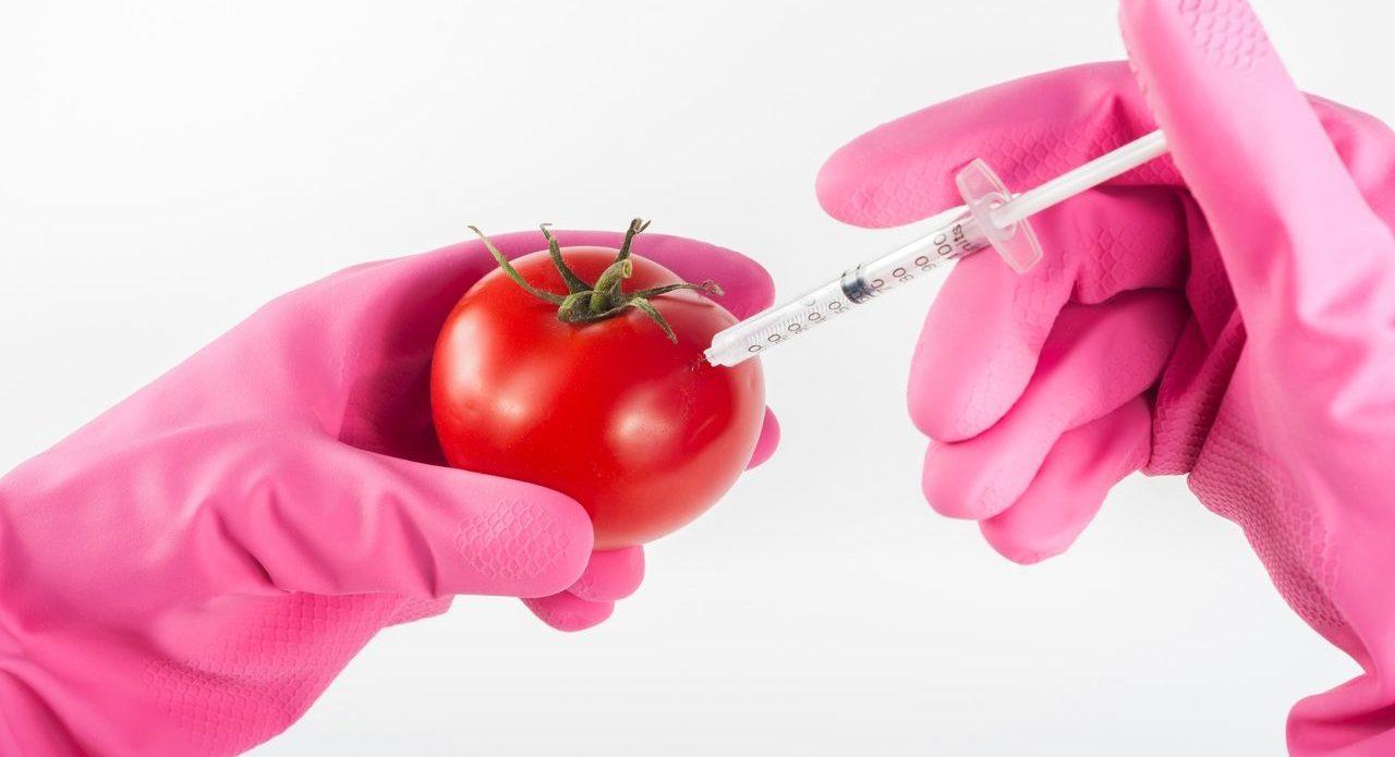 Food to Be. Expositie over de toekomst van ons voedsel.